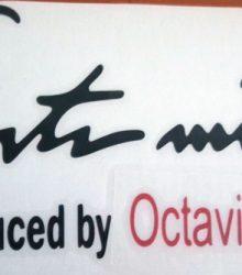 Nálepka Sport mind Octavia