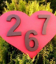 Súpisné číslo srdce